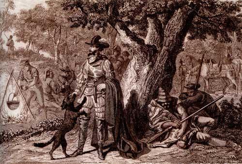 Perot al Quixot